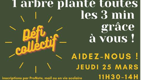 Défi collectif : Action planter des arbres dans le parc